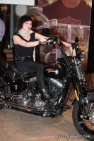 Marisa Miller and Harley Davidson #27