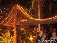 Botanical Gardens Winter Ball #36
