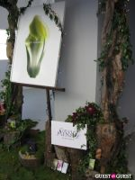 The Supper Club's Earth Day Spa Lounge #17