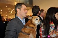 Humane Society of New York's Third Benefit Photography Auction #143