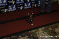 SKYBARK Pre Westminster Red Carpet #2