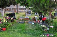 Johnny Ramone Tribute #42