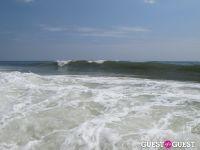 Surf's Up #8