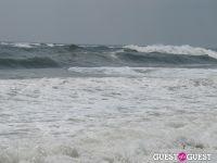 Surf's Up #14