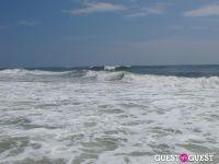 Surf's Up #21