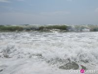 Surf's Up #24