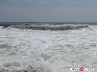 Surf's Up #25