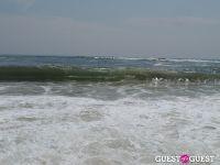 Surf's Up #30