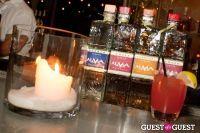 Alma De Agave Tequila Launch #5