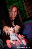 Beth Ostrosky Stern and Pacha NYC's 5th Anniversary Celebration To Support North Shore Animal League America #93