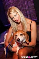Beth Ostrosky Stern and Pacha NYC's 5th Anniversary Celebration To Support North Shore Animal League America #96