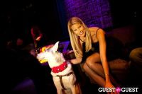 Beth Ostrosky Stern and Pacha NYC's 5th Anniversary Celebration To Support North Shore Animal League America #108