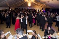 Brooklyn Kindergarten Society Annual Yuletide Ball #89