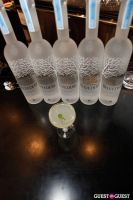 Belvedere Vodka Bartender's Dream Job Finals #152