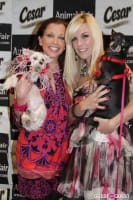 Puppy Love at Yappy Hour to Benefit Humane Society of NY #5
