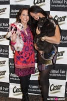 Puppy Love at Yappy Hour to Benefit Humane Society of NY #7