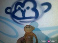 Baby Monkey goes to Indio #3