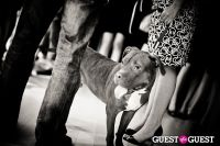 Love 4 Animals Fundraiser for NYC Shelter Animals #90