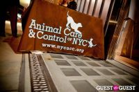 Love 4 Animals Fundraiser for NYC Shelter Animals #126