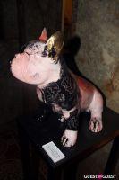 Doggy John Exhibition #30