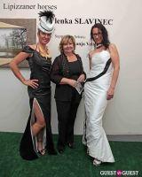 Slovenia in US Lipizzaner horses by Alenka Slavinec #25
