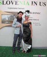 Slovenia in US Lipizzaner horses by Alenka Slavinec #42