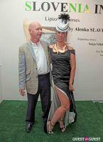 Slovenia in US Lipizzaner horses by Alenka Slavinec #46