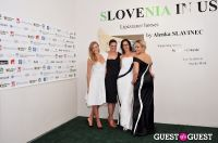 Slovenia in US at Gallery MC #21