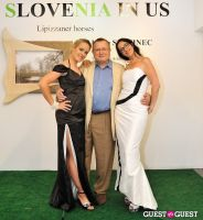 Slovenia in US at Gallery MC #76