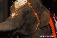 Libby Keatinge's Legend Of The Maharani Birthday Party #6