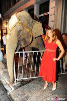 Libby Keatinge's Legend Of The Maharani Birthday Party #9