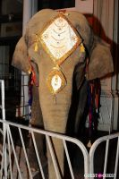 Libby Keatinge's Legend Of The Maharani Birthday Party #12