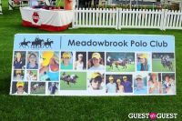The 27th Annual Harriman Cup Polo Match #5