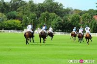 The 27th Annual Harriman Cup Polo Match #165