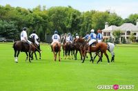 The 27th Annual Harriman Cup Polo Match #171