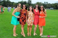 The 27th Annual Harriman Cup Polo Match #190