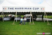 The 27th Annual Harriman Cup Polo Match #201