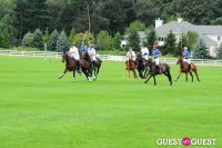 The 27th Annual Harriman Cup Polo Match #211
