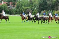 The 27th Annual Harriman Cup Polo Match #213