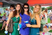 The 27th Annual Harriman Cup Polo Match #223