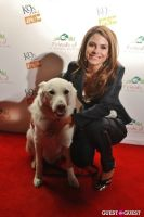 The Friends Of LA Animal Shelters Hosted By K9s Only West #72