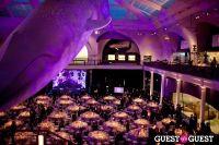 American Museum of Natural History Gala #1