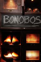 The Unveiling of Bonobos Denim #91