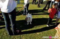 Sunday Polo: January 15, 2012 #29