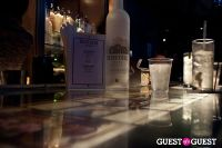 Andrew Buckler's Fall 2012 Pre-Fashion Week Party & The Elsinore's First Construction Party with Belvedere Vodka #21
