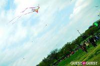 Cherry Blossom Kite Festival #8