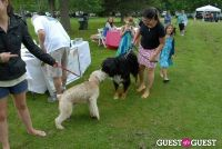 Paws Across The Hamptons Dog Walk To Benefit Southampton Hospital & Animal Shelter Foundation #28