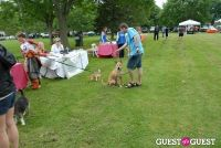 Paws Across The Hamptons Dog Walk To Benefit Southampton Hospital & Animal Shelter Foundation #32