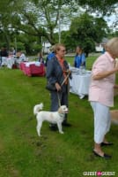 Paws Across The Hamptons Dog Walk To Benefit Southampton Hospital & Animal Shelter Foundation #40