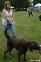 Paws Across The Hamptons Dog Walk To Benefit Southampton Hospital & Animal Shelter Foundation #90